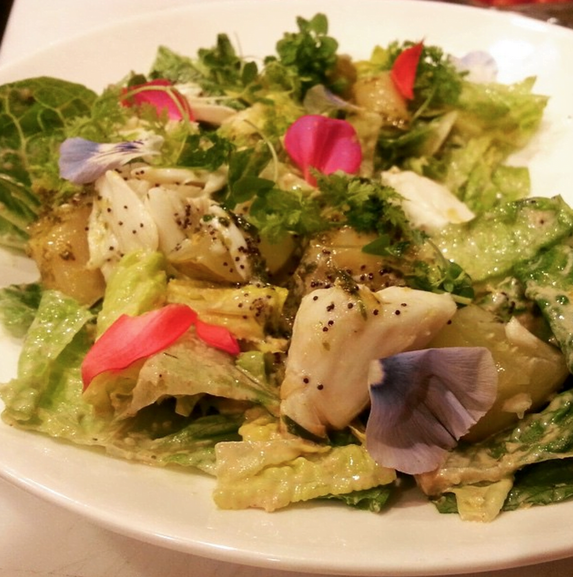Dining BBDs Restaurant Long Island Salad