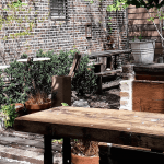 Dining Milk & Roses Restaurant Garden