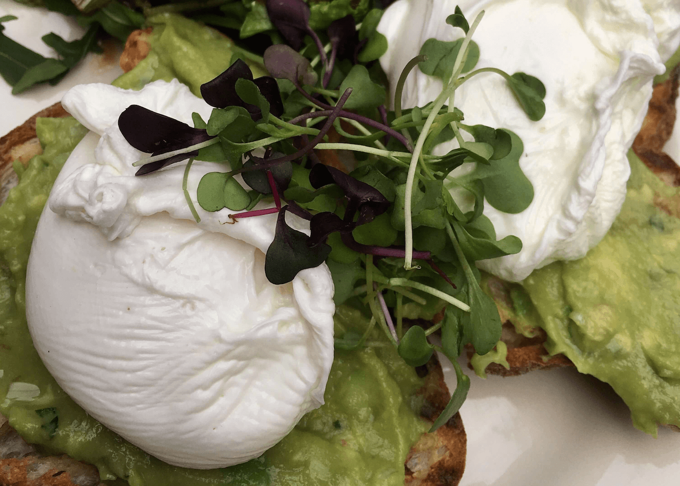 Dining Milk & Roses Restaurant Poached Eggs Avocado Toast