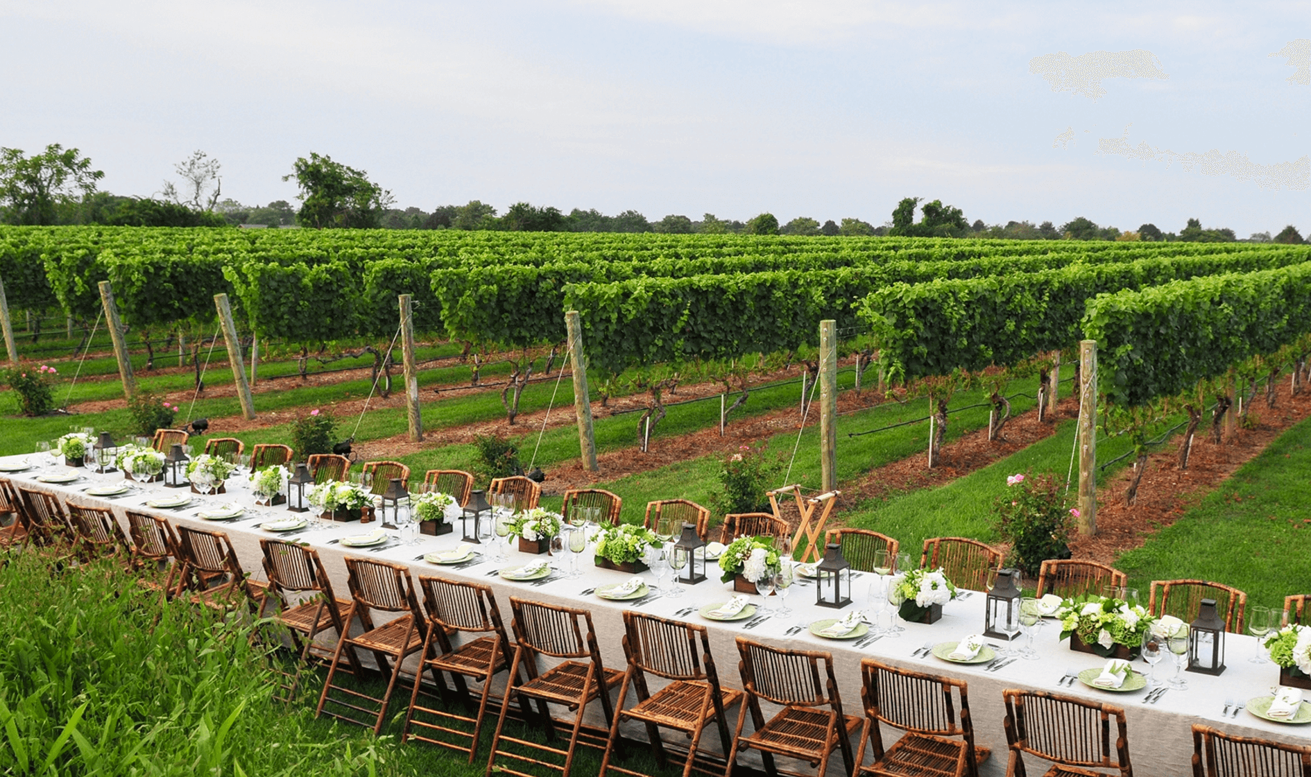 Dining Wolffer Estate Vineyard Tastings Glamour Mag Outdoor Wedding