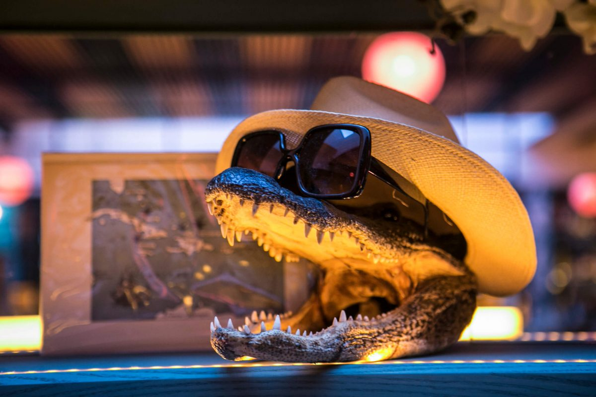 Nightlife Bar The Happiest Hour Alligator Skull