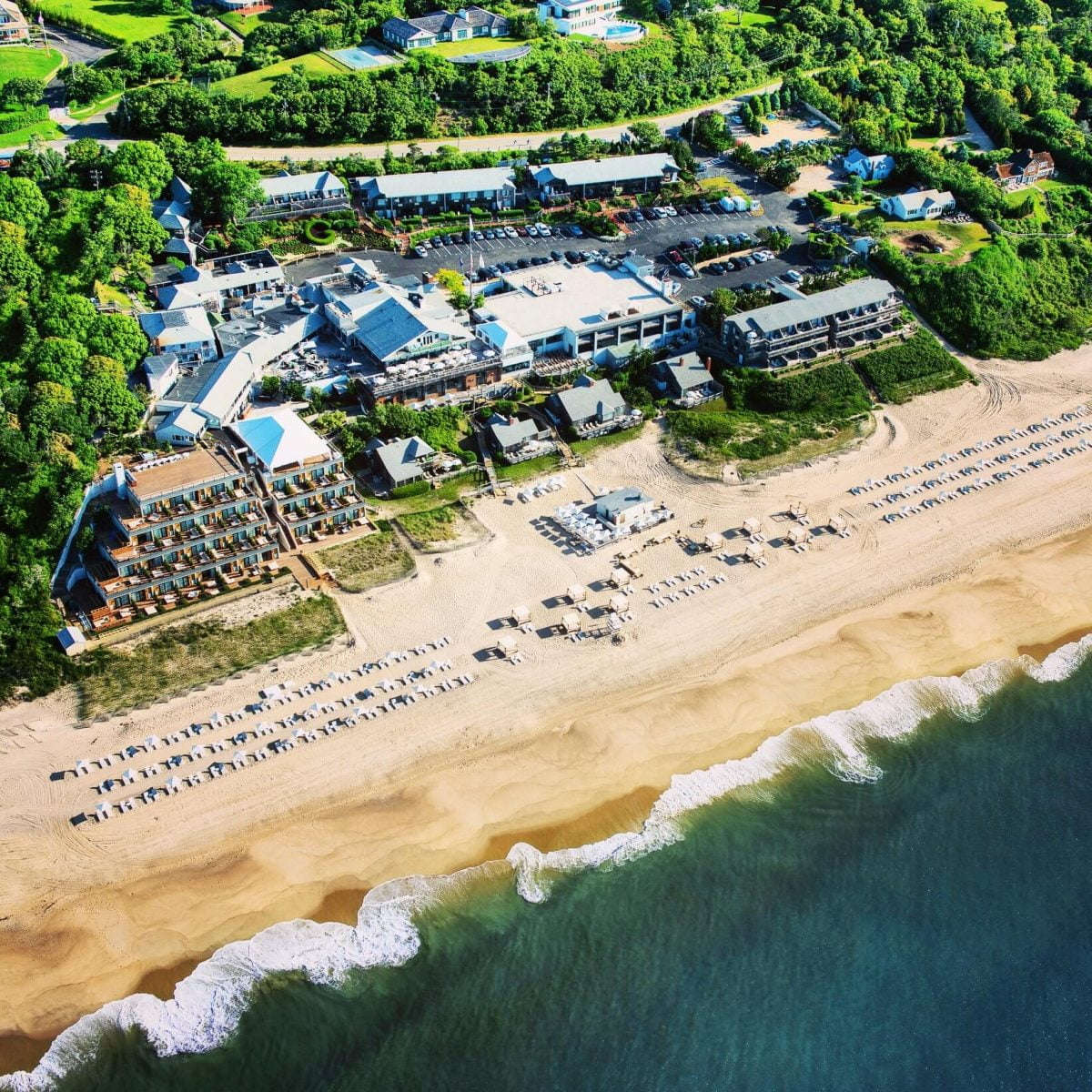 Day Trips and Travels Gurneys Montauk Resort Bird View