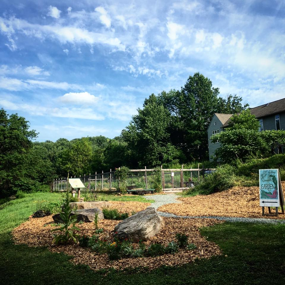 Insider Interviews Juliette Hermant Narrowsburg Tusten Heritage Community Garden General View