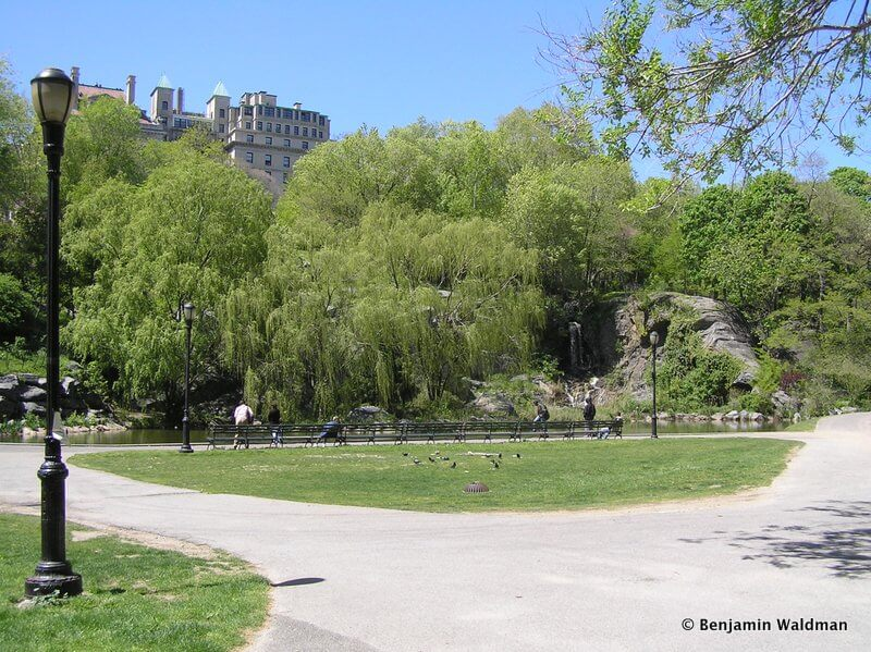 Curiosities City Secrets Morningside Park in Harlem by Untapped Cities Benjamin Waldman