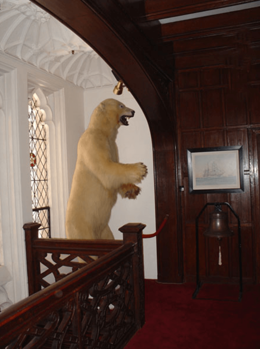 Curiosities Our Bucket Lists 5 Offbeat Museums NYC Explorers Club Bear