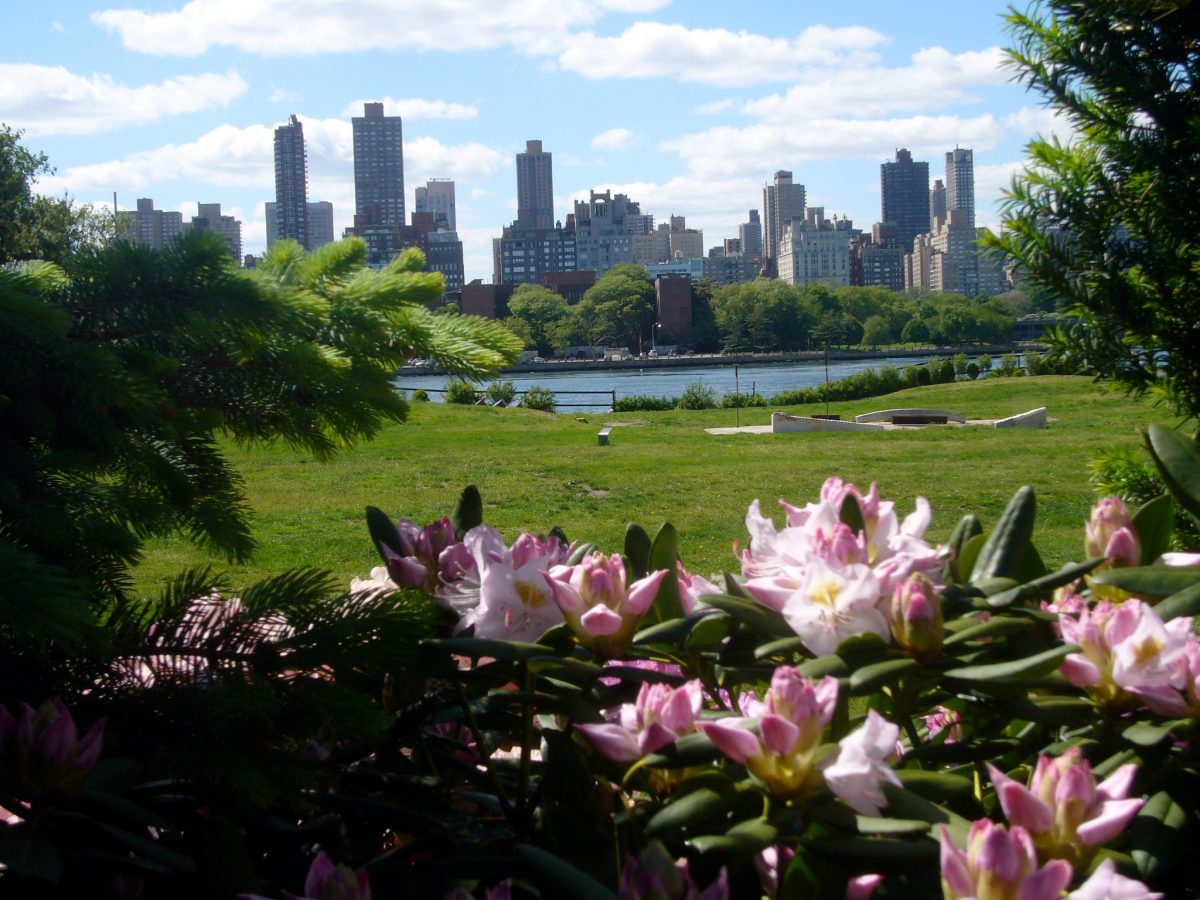 Curiosities Our Bucket Lists 7 Best Places For Art Lovers LIC Socrates Sculpture Park