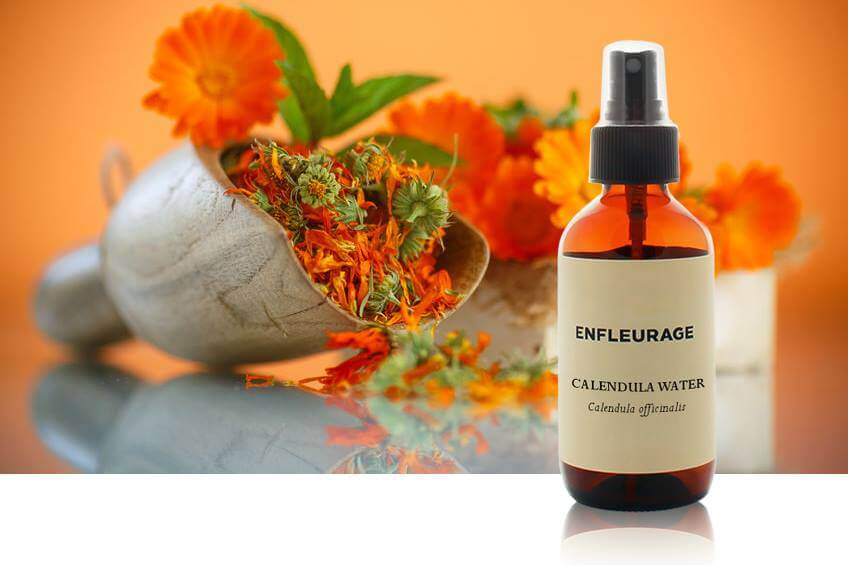 Shop Specialties Enfleurage Essencial Oils in New York Calendula Water