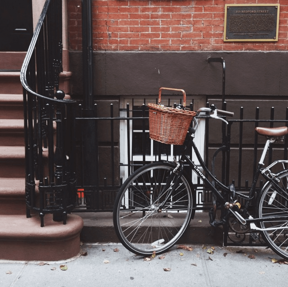 Curiosities Insider Interviews Amra and Elma West Village Bike