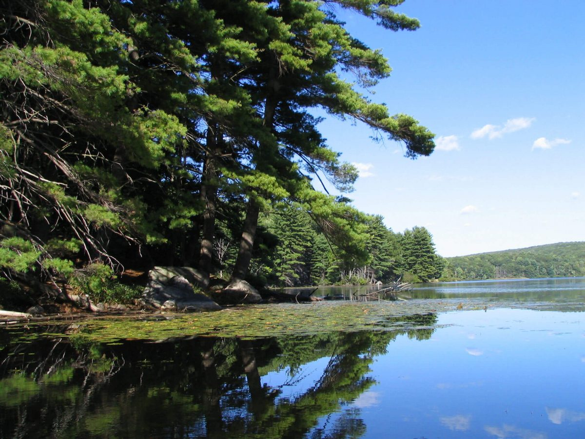 Curiosities Insider Interviews Jenna Rice Harriman State Park Kanawauke by Mwanner