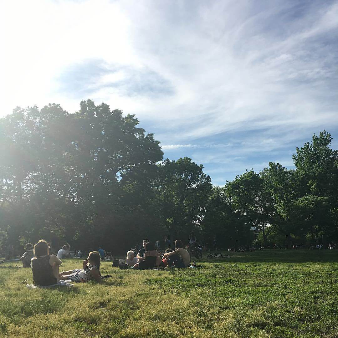 Curiosities Insider Interviews Raquel Paiva McCarren Park Williamsburg Summer