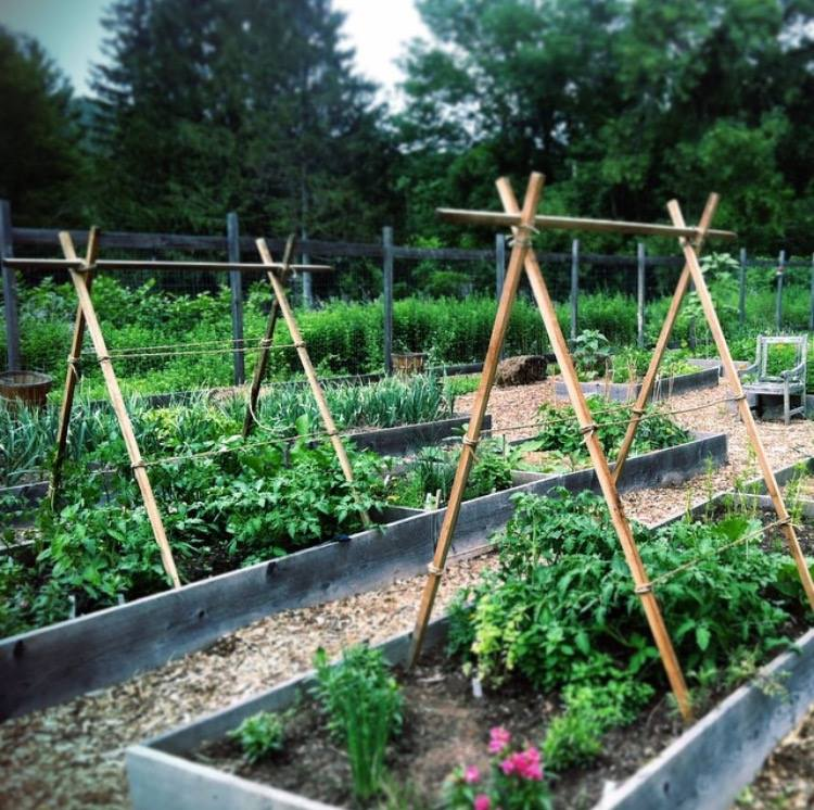 Curiosities Insider Interviews Juliette Hermant Narrowsburg Tusten Heritage Community Garden