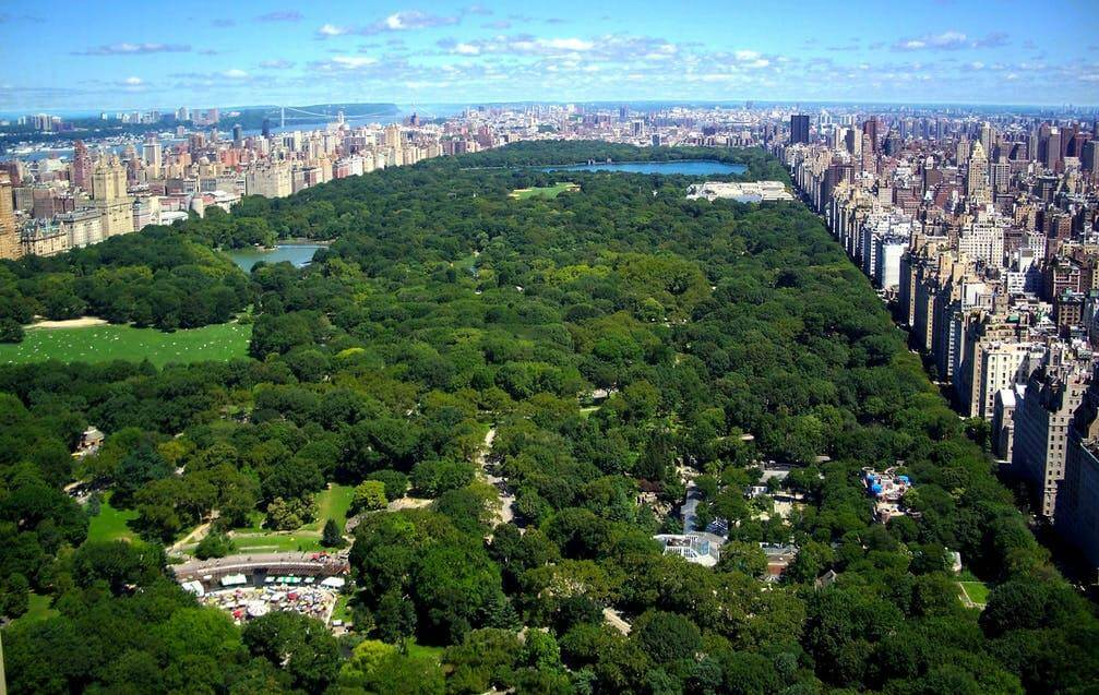 Shop NYC Wedding NYC Helicopter Tour Central Park