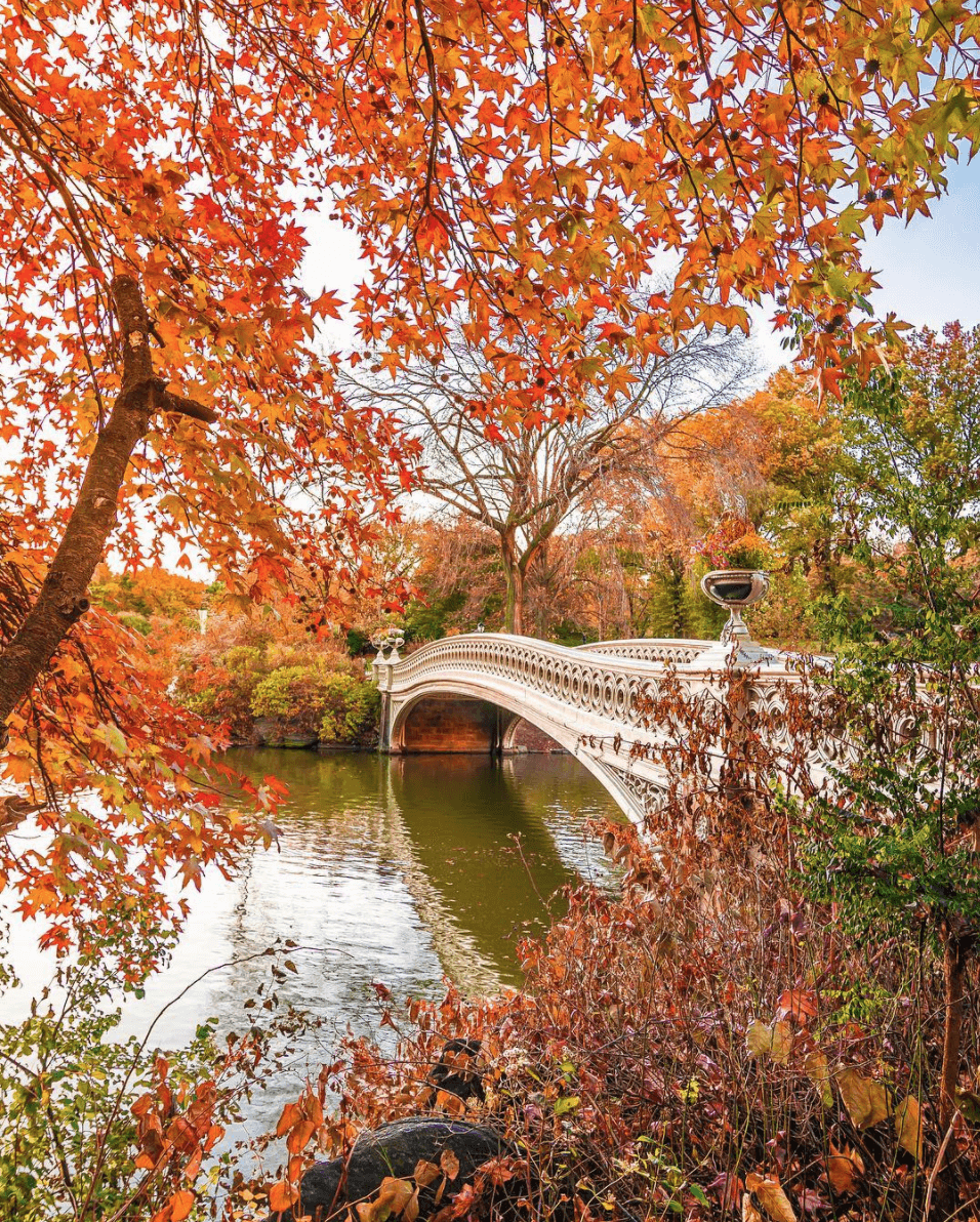 BTSNYC Experiences On Going Secrets of Central Park Walking Tour NYCLovesNYC