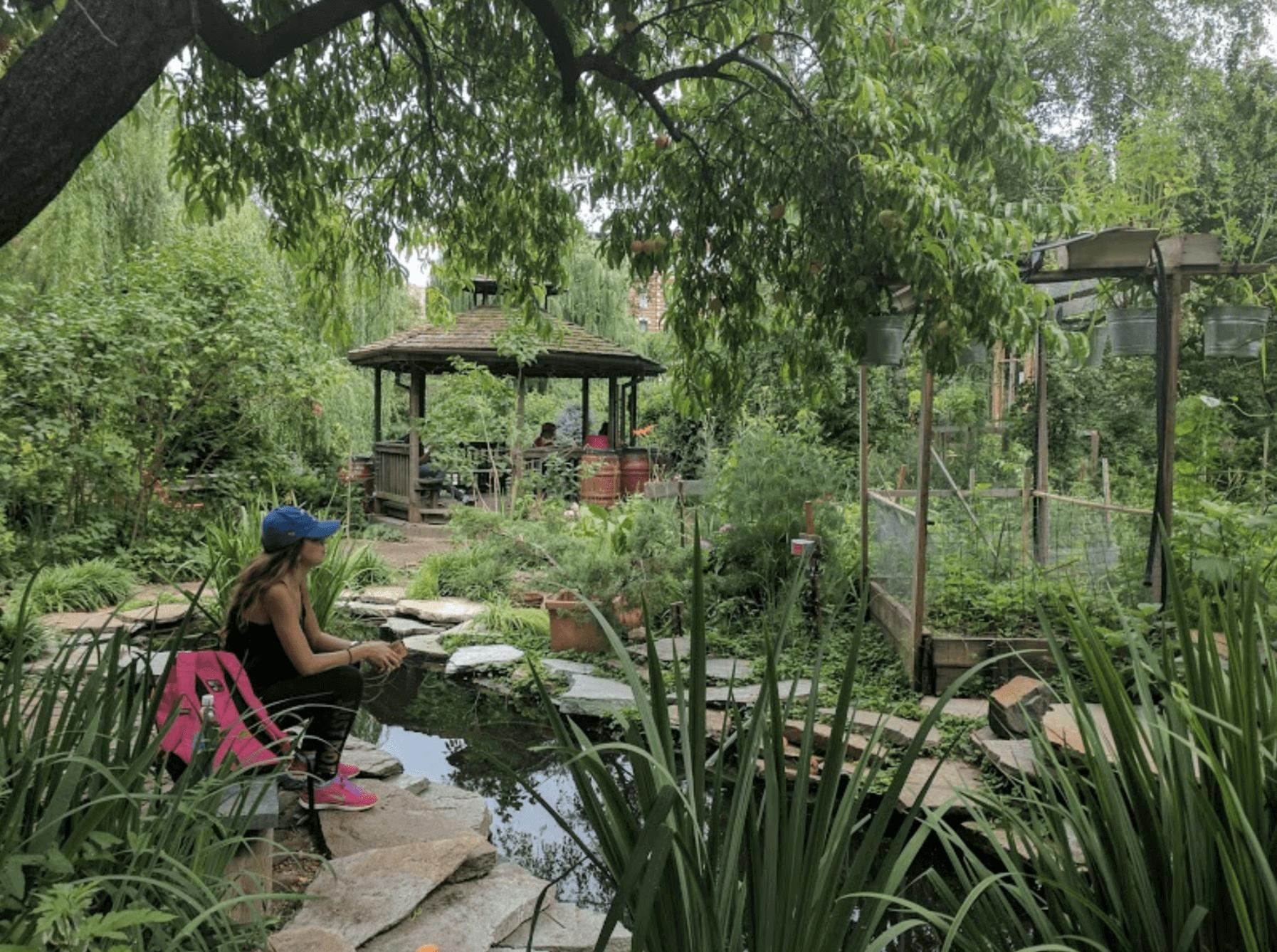 Curiosities Our Bucket Lists 3 NYC Hidden Gems La Plaza Cultural de Armando Perez Community Garden