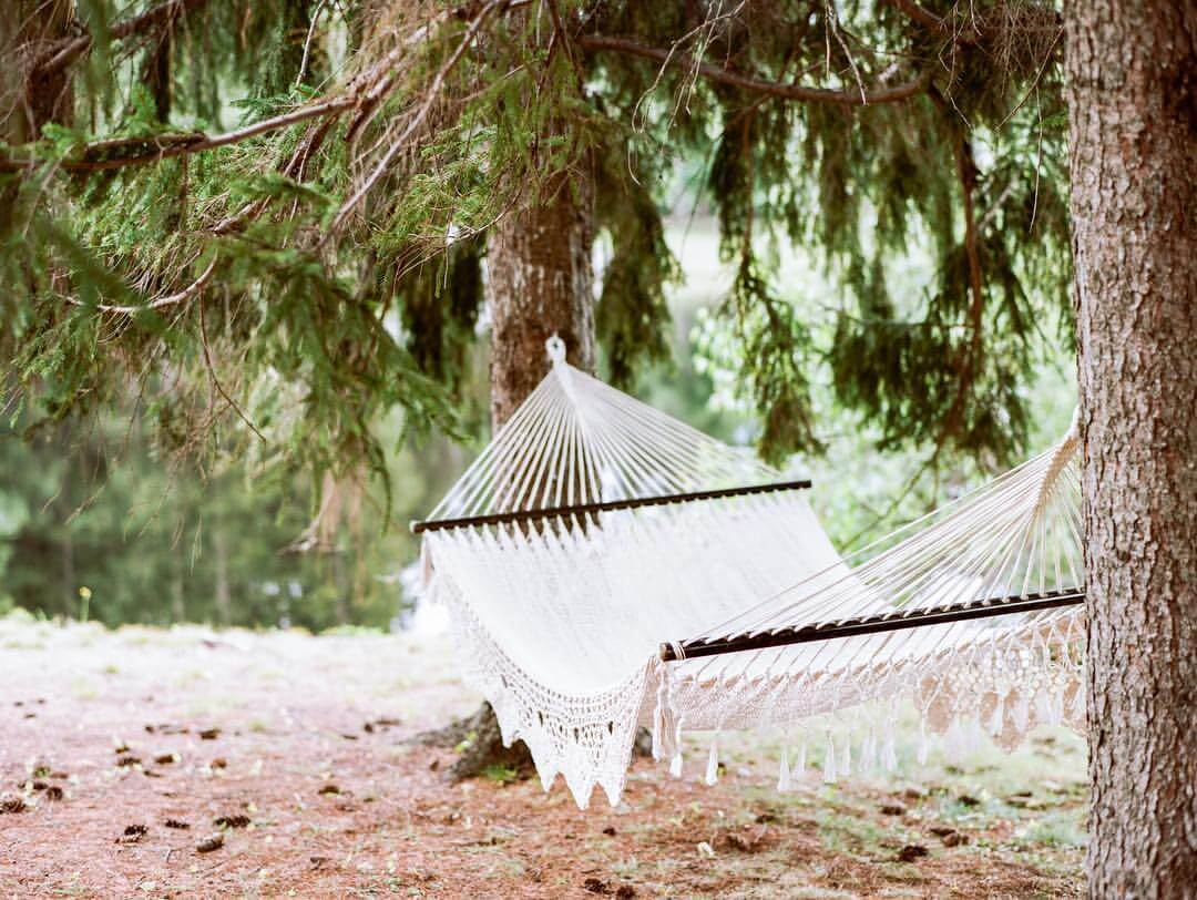 Day Trips and Travels Cedar Lakes Estate Hammock
