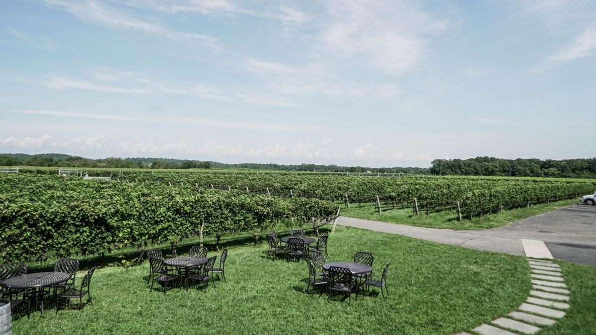 Day Trips and Travels Macari Vineyards Outdoor Tables