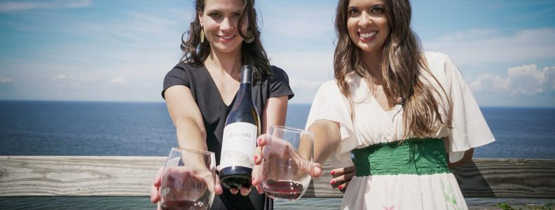 Day Trips and Travels Macari Vineyards Wine Tasting