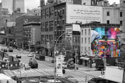Kobra Mural Grafitti New York Tolerance
