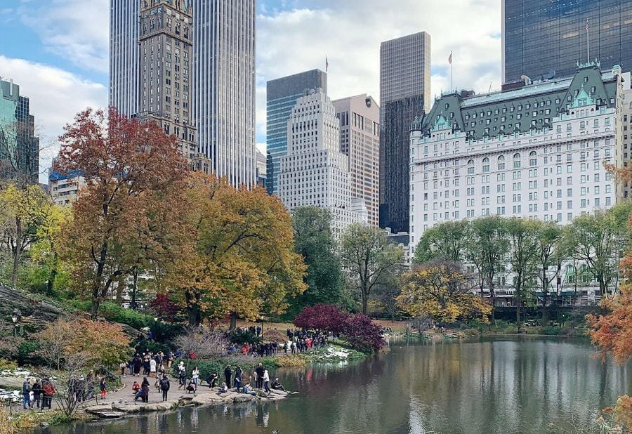 16 Things No One Ever Tells You About NYC Part 3 The Pond