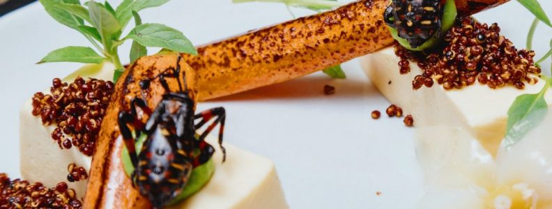 Dining NYC Food Trends Insects Black Ant