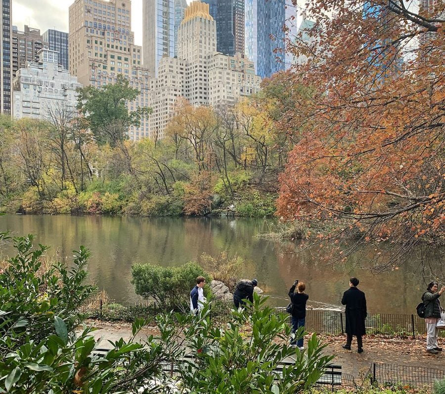 Curiosities Our Bucket Lists Fun Things To Do In NYC This Fall Central Park Walking Tour